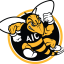 2347_aic__yellow_jackets-alternate-2009